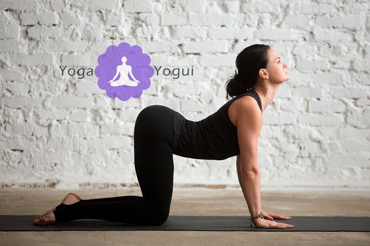 Bitilasana, la postura de yoga de la vaca