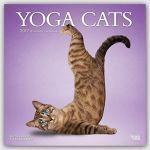 Calendario yoga